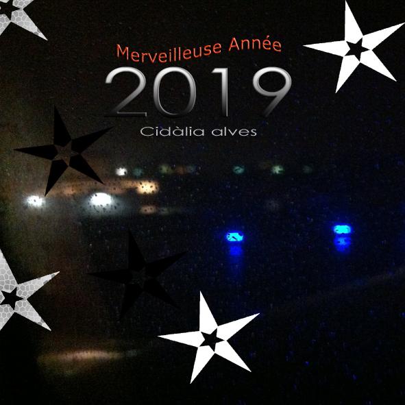 Merveilleuse Année 2019